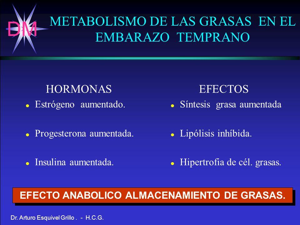 EFECTO ANABOLICO ALMACENAMIENTO DE GRASAS.