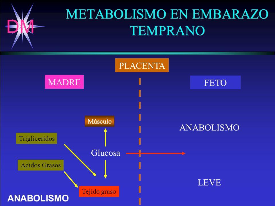 METABOLISMO EN EMBARAZO TEMPRANO