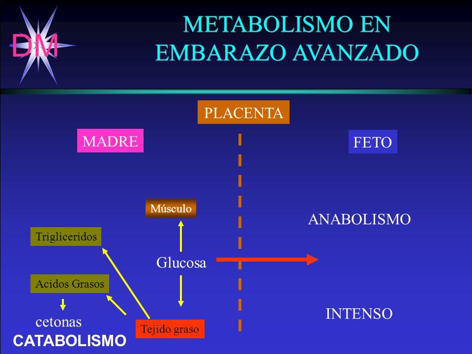 METABOLISMO EN EMBARAZO AVANZADO PLACENTA MADRE FETO ANABOLISMO
