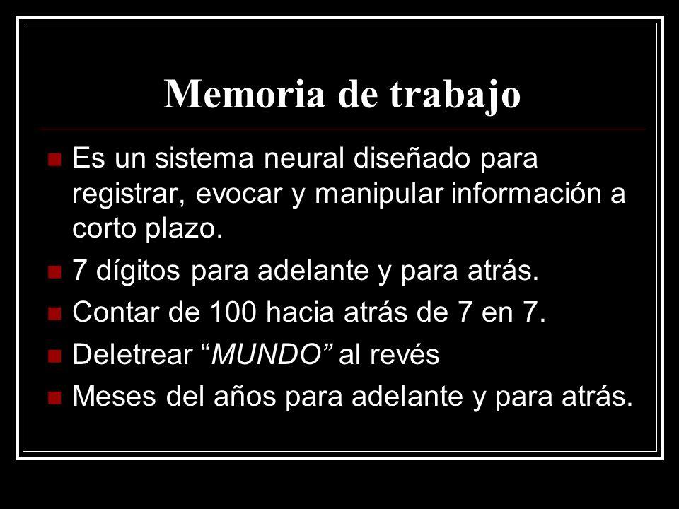 Memoria de trabajo Es un sistema neural diseñado para registrar, evocar y manipular información a corto plazo.