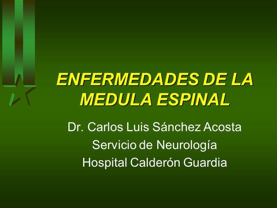 ENFERMEDADES DE LA MEDULA ESPINAL