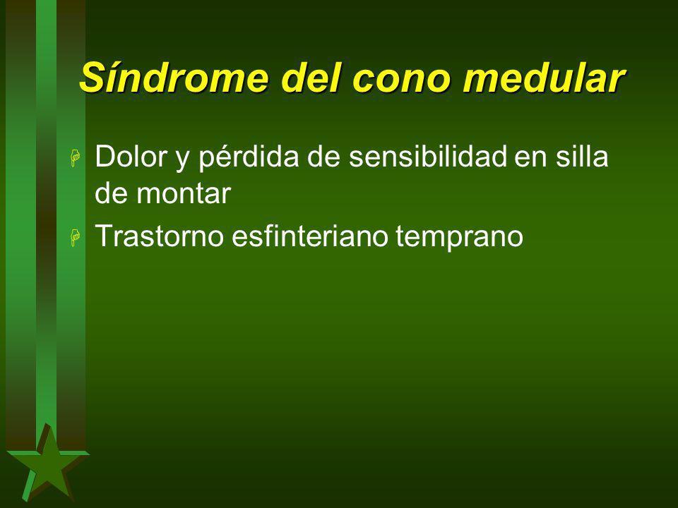 Síndrome del cono medular