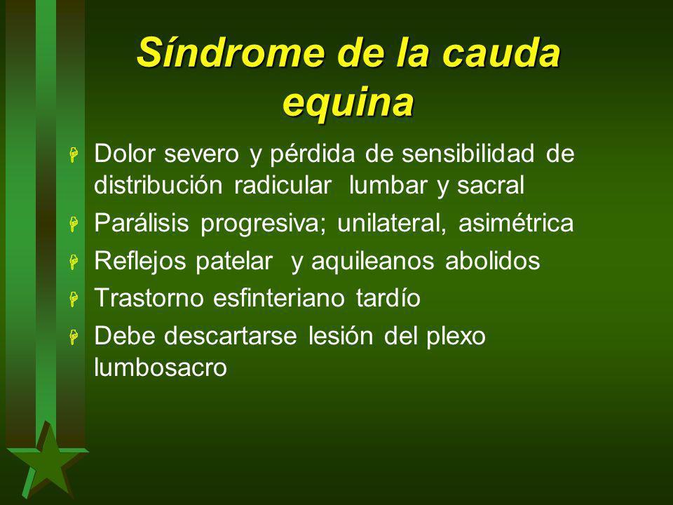 Síndrome de la cauda equina