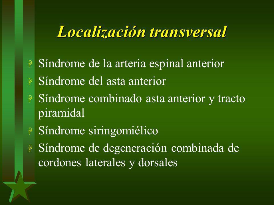 Localización transversal