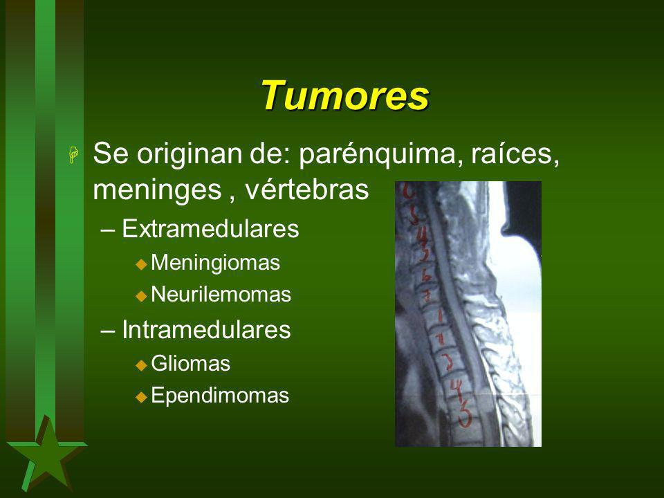 Tumores Se originan de: parénquima, raíces, meninges , vértebras