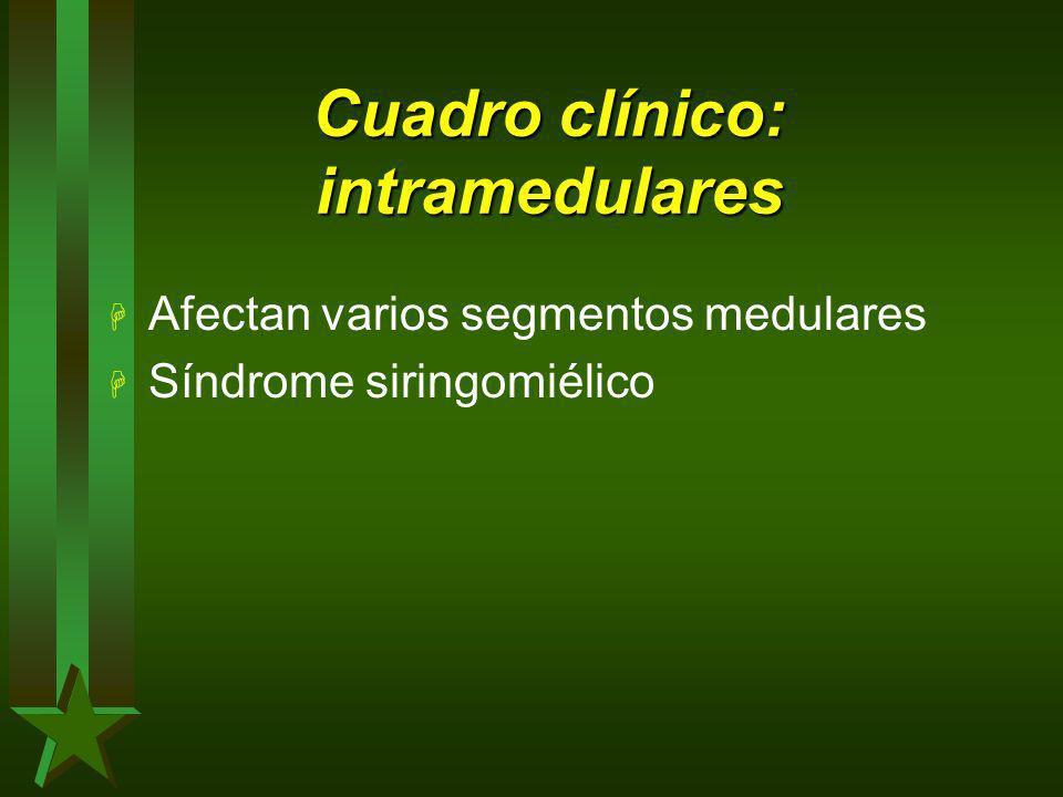 Cuadro clínico: intramedulares