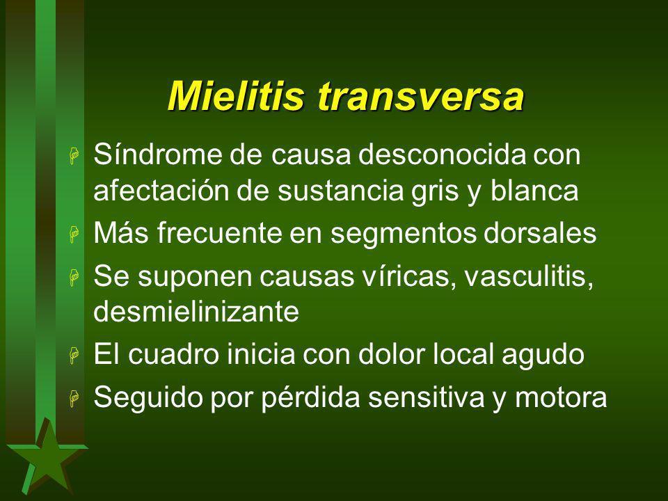 Mielitis transversa Síndrome de causa desconocida con afectación de sustancia gris y blanca. Más frecuente en segmentos dorsales.