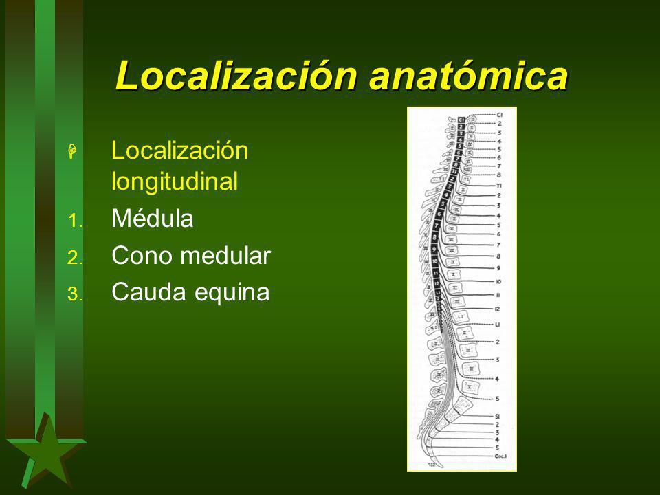 Localización anatómica