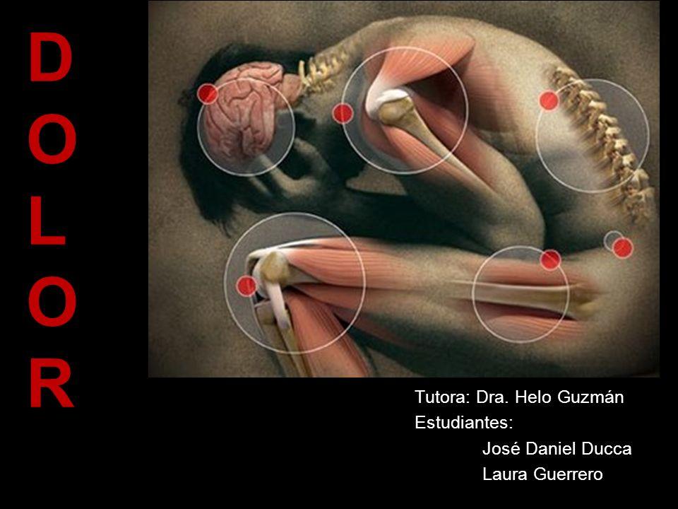 Tutora: Dra. Helo Guzmán Estudiantes: José Daniel Ducca Laura Guerrero