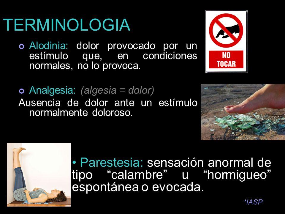 TERMINOLOGIAAlodinia: dolor provocado por un estímulo que, en condiciones normales, no lo provoca. Analgesia: (algesia = dolor)