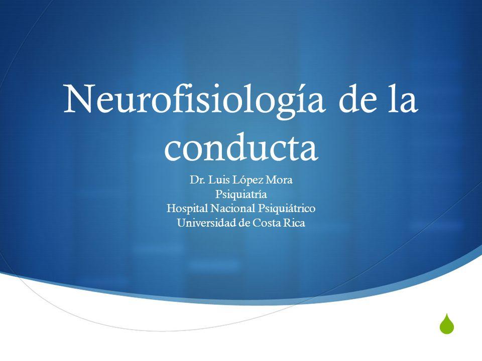 Neurofisiología de la conducta