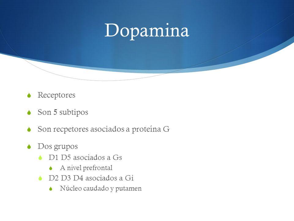Dopamina Receptores Son 5 subtipos