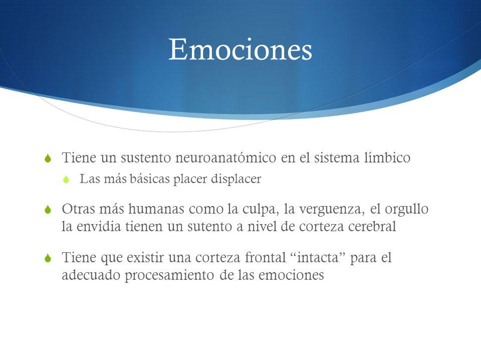 Emociones Tiene un sustento neuroanatómico en el sistema límbico