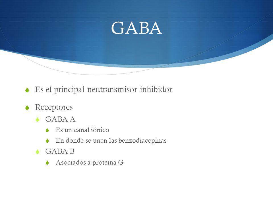 GABA Es el principal neutransmisor inhibidor Receptores GABA A GABA B
