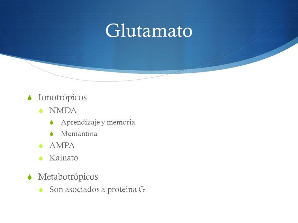Glutamato Ionotrópicos Metabotrópicos NMDA AMPA Kainato