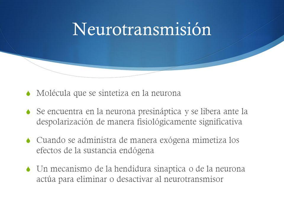 Neurotransmisión Molécula que se sintetiza en la neurona