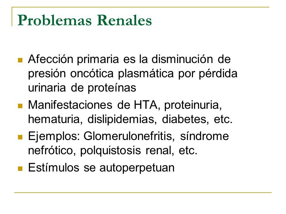 Problemas Renales Afección primaria es la disminución de presión oncótica plasmática por pérdida urinaria de proteínas.