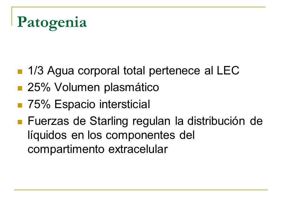 Patogenia 1/3 Agua corporal total pertenece al LEC