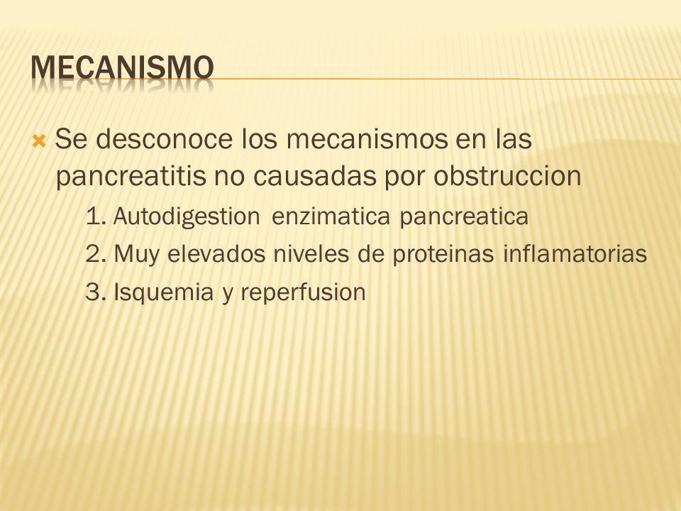 MecanismoSe desconoce los mecanismos en las pancreatitis no causadas por obstruccion. 1. Autodigestion enzimatica pancreatica.
