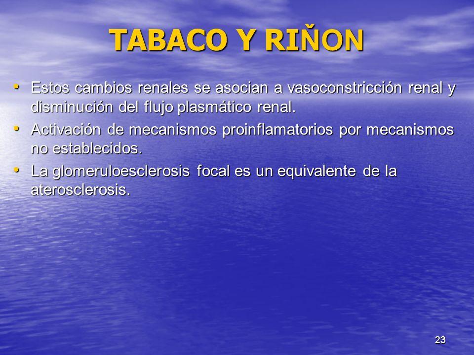 TABACO Y RIŇON Estos cambios renales se asocian a vasoconstricción renal y disminución del flujo plasmático renal.