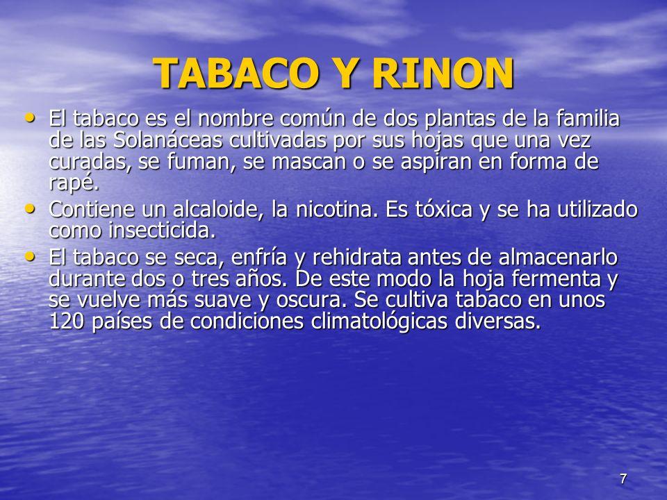 TABACO Y RINON