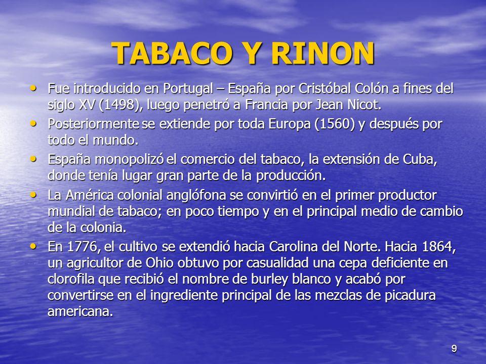 TABACO Y RINON Fue introducido en Portugal – España por Cristóbal Colón a fines del siglo XV (1498), luego penetró a Francia por Jean Nicot.