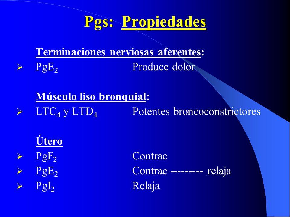 Pgs: Propiedades Terminaciones nerviosas aferentes: PgE2 Produce dolor