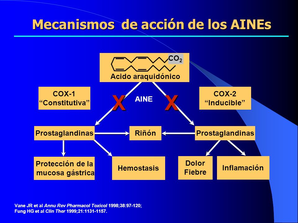 Mecanismos de acción de los AINEs Protección de la mucosa gástrica