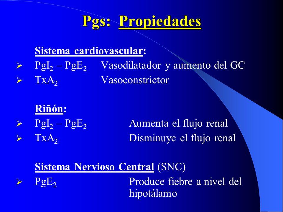 Pgs: Propiedades Sistema cardiovascular: