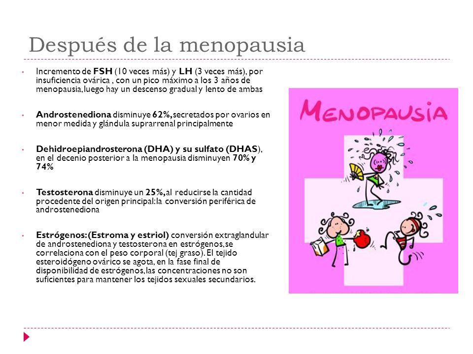 Después de la menopausia