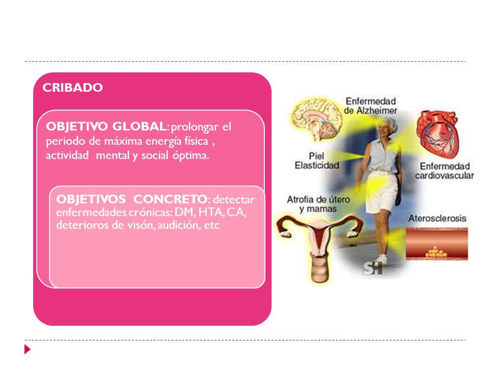CRIBADO OBJETIVO GLOBAL: prolongar el periodo de máxima energía física , actividad mental y social óptima.