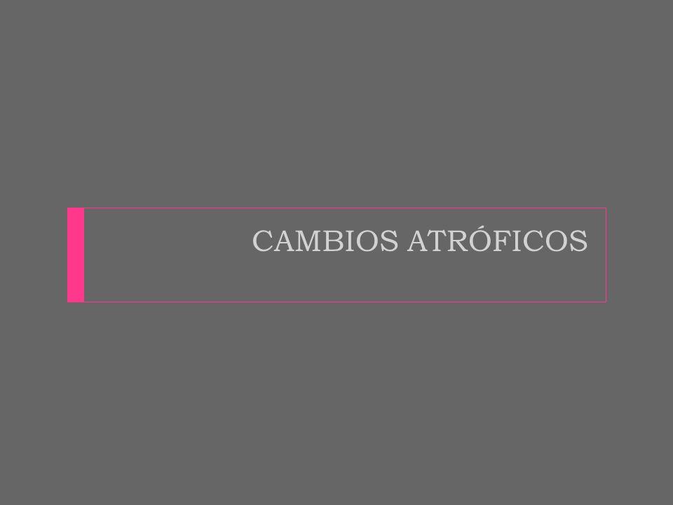 CAMBIOS ATRÓFICOS