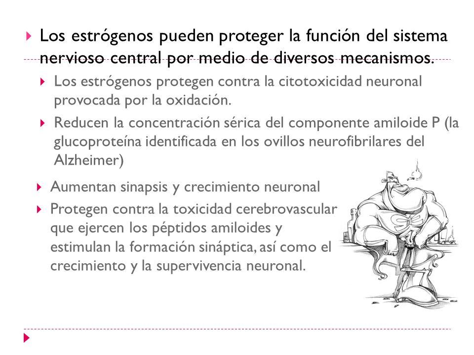 Los estrógenos pueden proteger la función del sistema nervioso central por medio de diversos mecanismos.