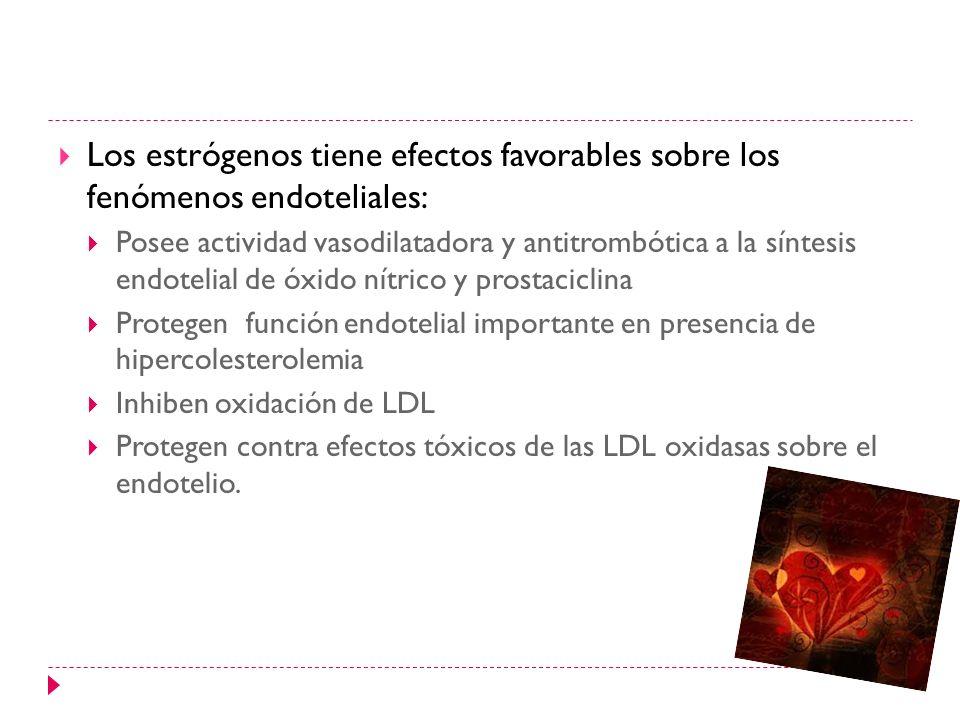 Los estrógenos tiene efectos favorables sobre los fenómenos endoteliales: