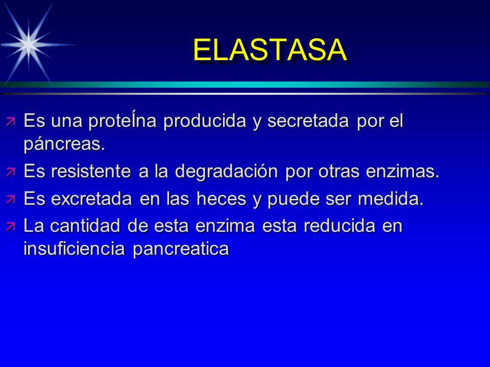 ELASTASA Es una proteÍna producida y secretada por el páncreas.