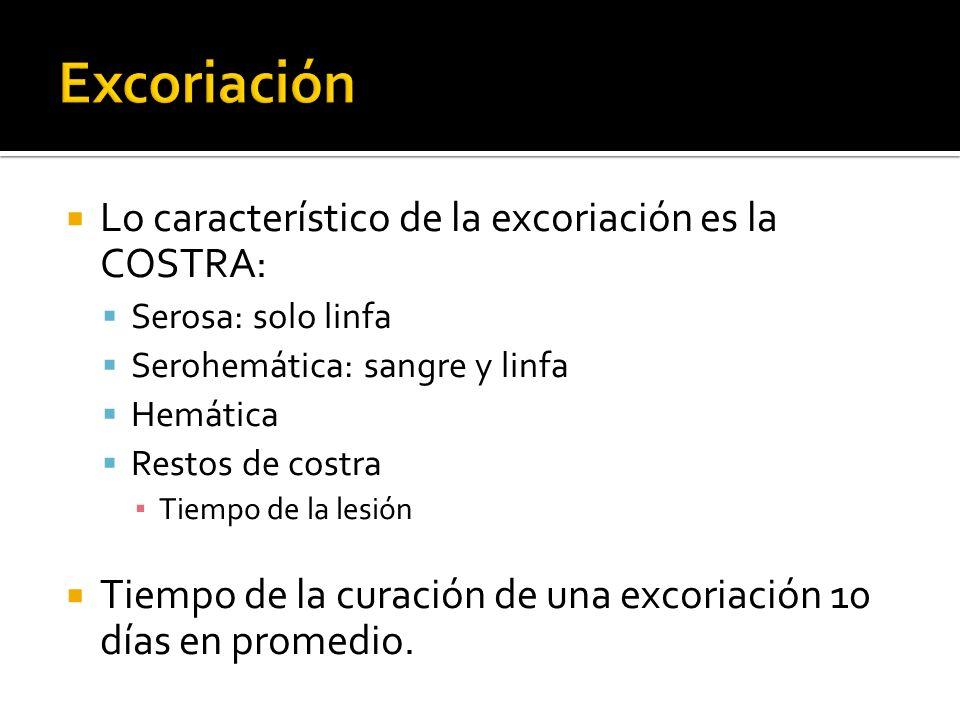 Excoriación Lo característico de la excoriación es la COSTRA: