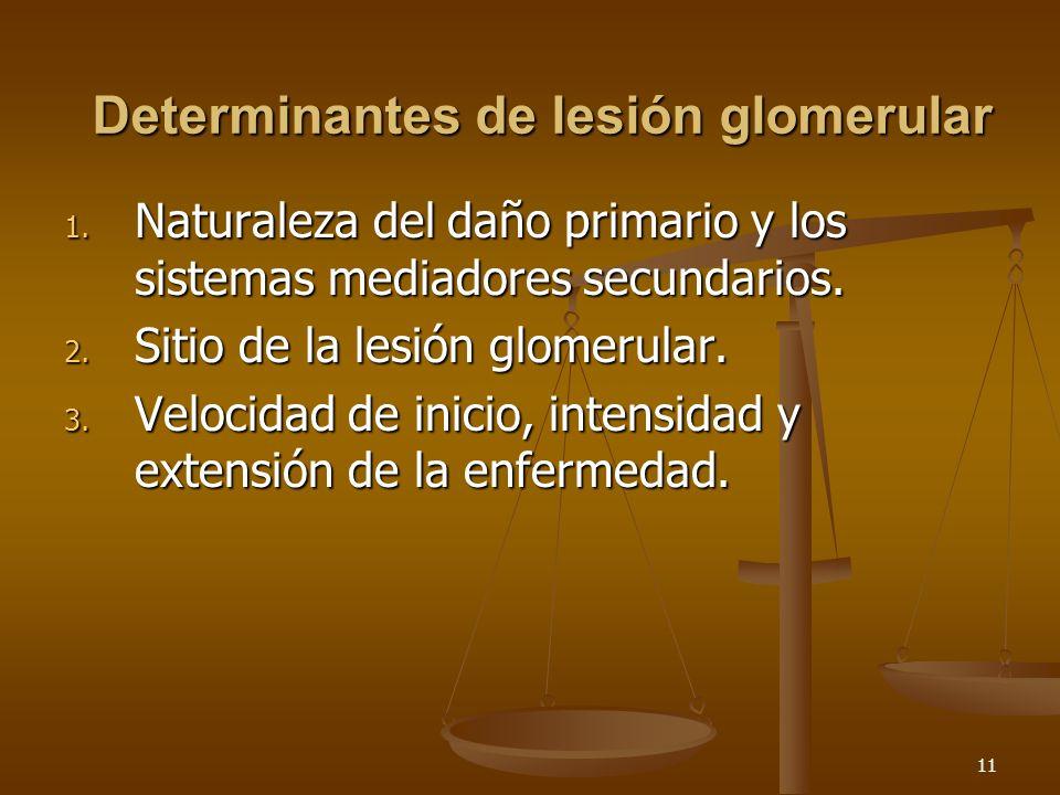 Determinantes de lesión glomerular