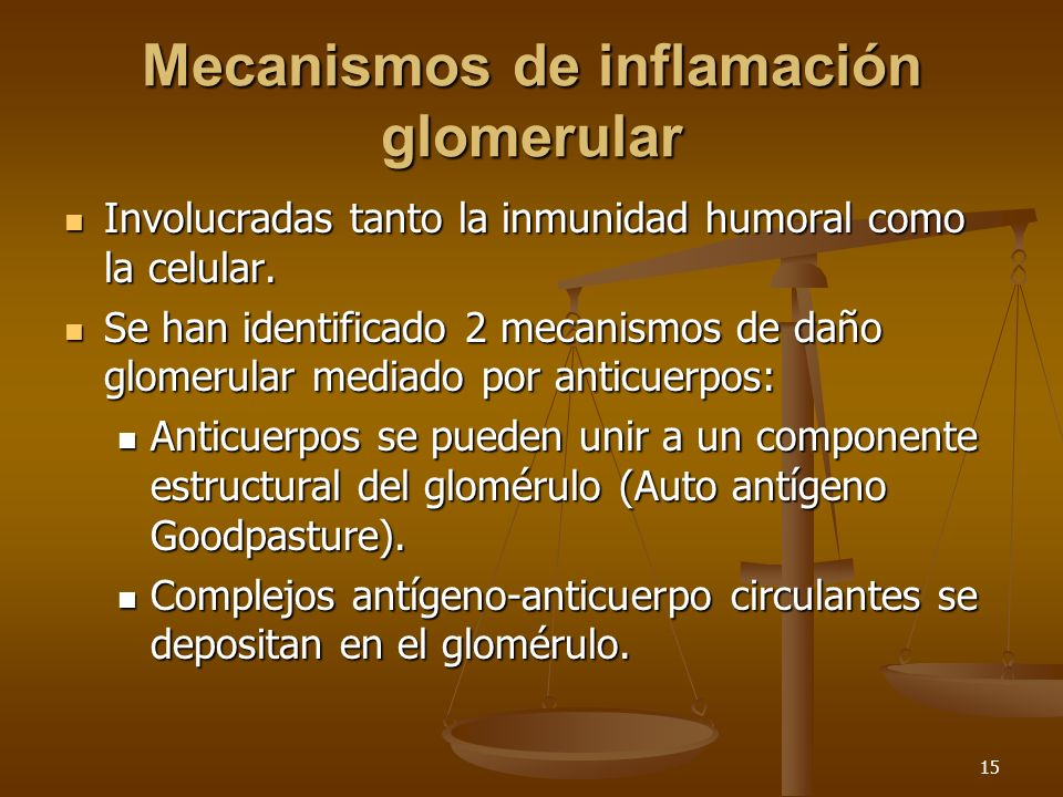Mecanismos de inflamación glomerular