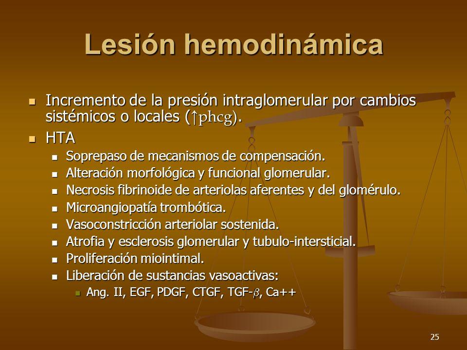 Lesión hemodinámica Incremento de la presión intraglomerular por cambios sistémicos o locales (↑phcg).