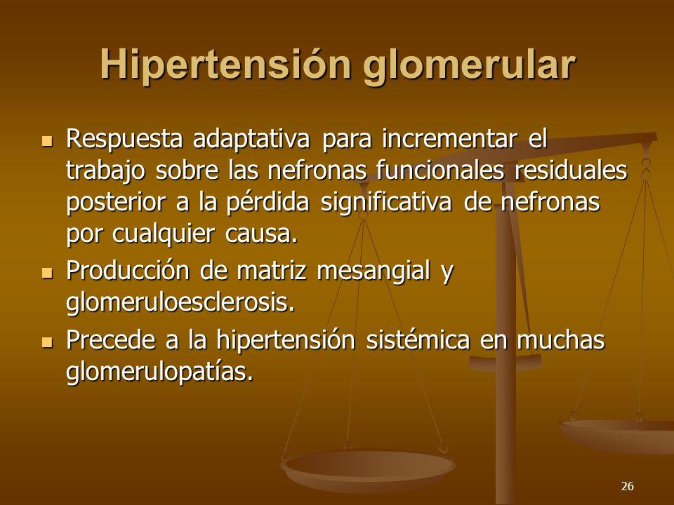 Hipertensión glomerular
