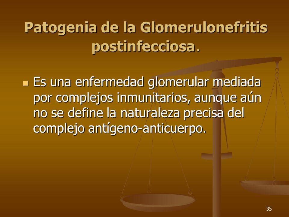 Patogenia de la Glomerulonefritis postinfecciosa.