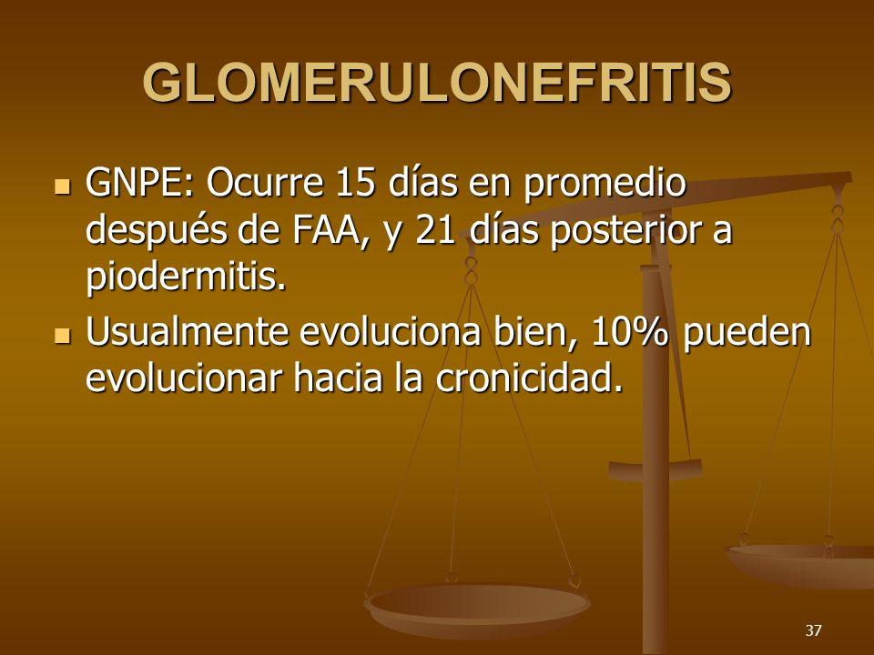 GLOMERULONEFRITIS GNPE: Ocurre 15 días en promedio después de FAA, y 21 días posterior a piodermitis.