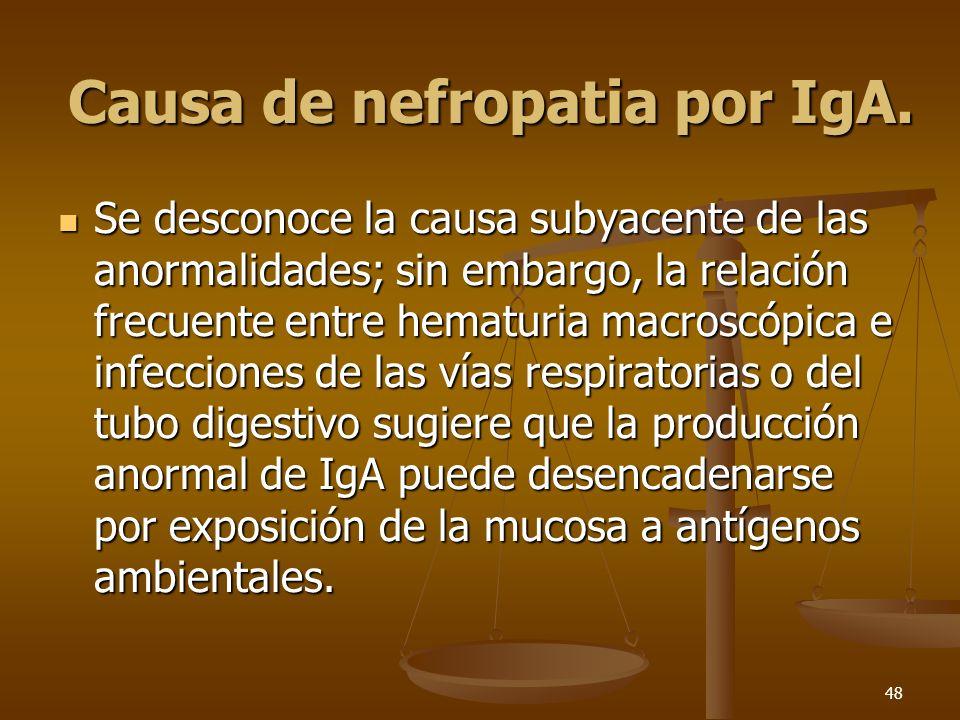 Causa de nefropatia por IgA.