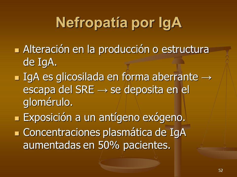 Nefropatía por IgA Alteración en la producción o estructura de IgA.