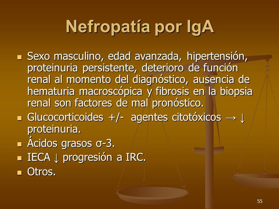 Nefropatía por IgA