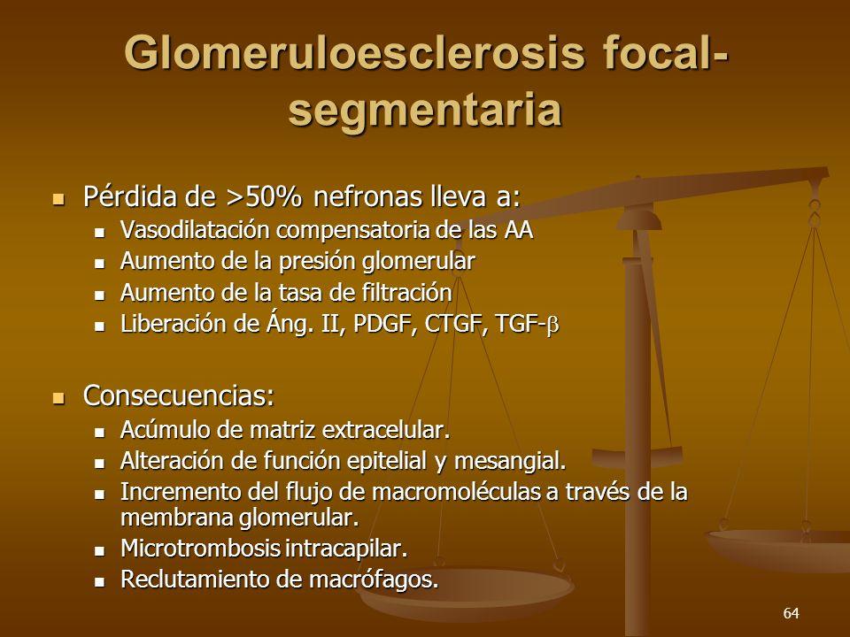 Glomeruloesclerosis focal-segmentaria