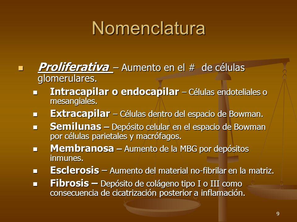 Nomenclatura Proliferativa – Aumento en el # de células glomerulares.