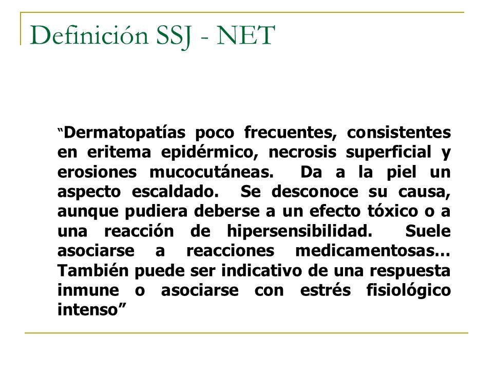 Definición SSJ - NET