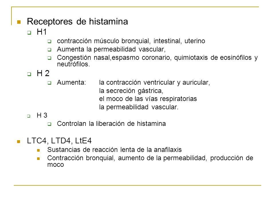 Receptores de histamina