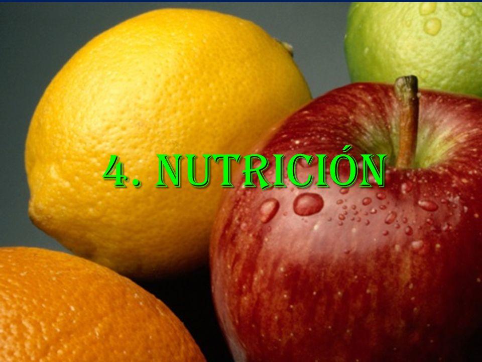4. Nutrición